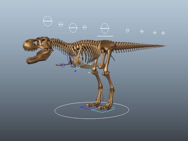 Tyrannosaurus Rex luuranko