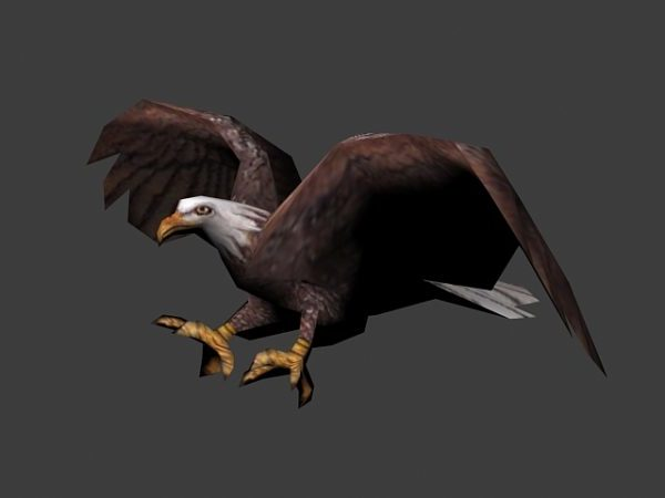 Animoitu Eagle Flying