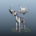 Irish Elk Rig