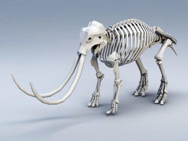 Mammutin luuranko