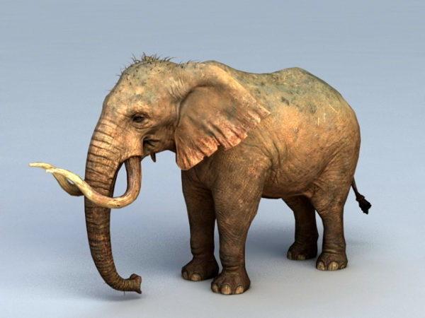 الماموث الفيل
