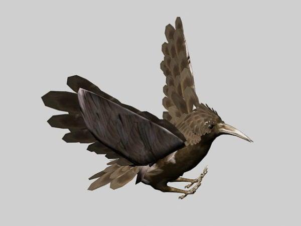 Bird Rig Animation