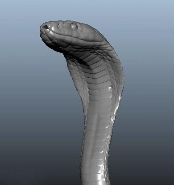 Serpiente cobra