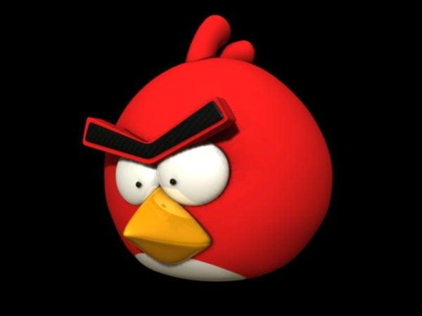 Pájaro enojado rojo