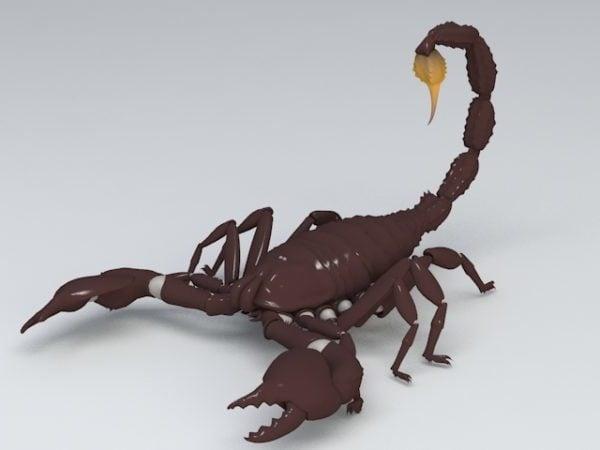 Scorpion Animal