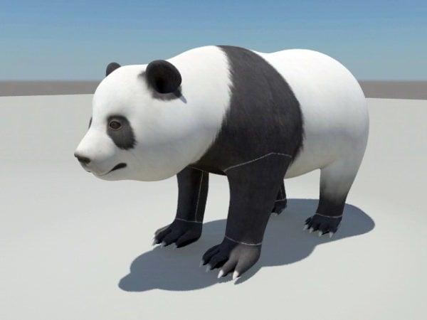 دب الباندا