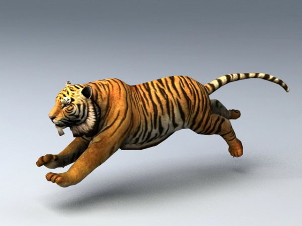 Animated Tiger Rig