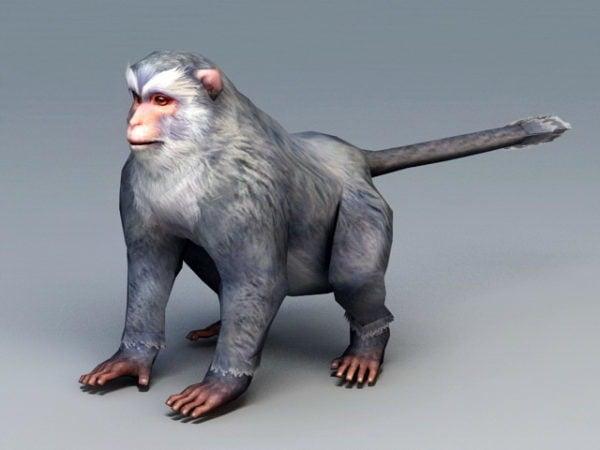 القرد الرمادي