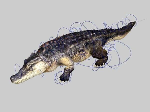 تلاعب التمساح المتحركة