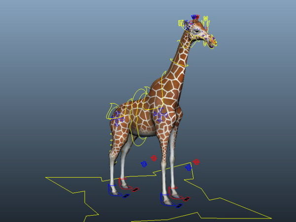 Reticulated Giraffe Rig