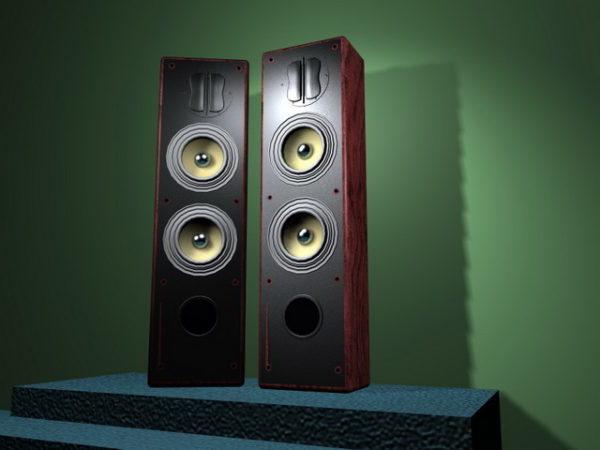 Big Hi-fi Speakers