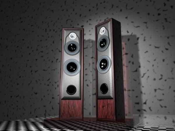 Audio System Speakers