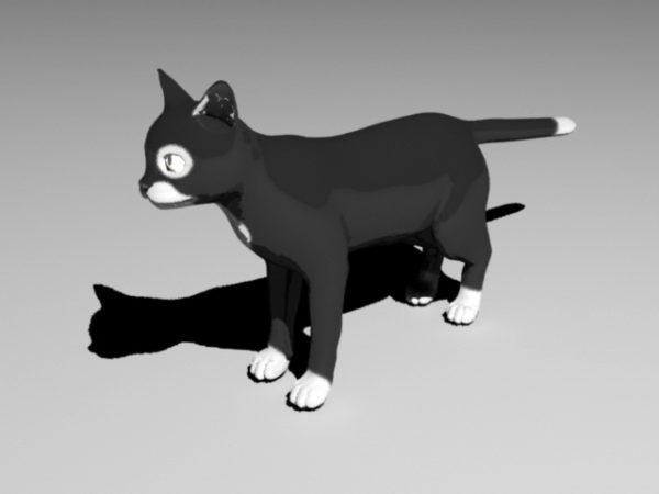 Black Cat With Rigged