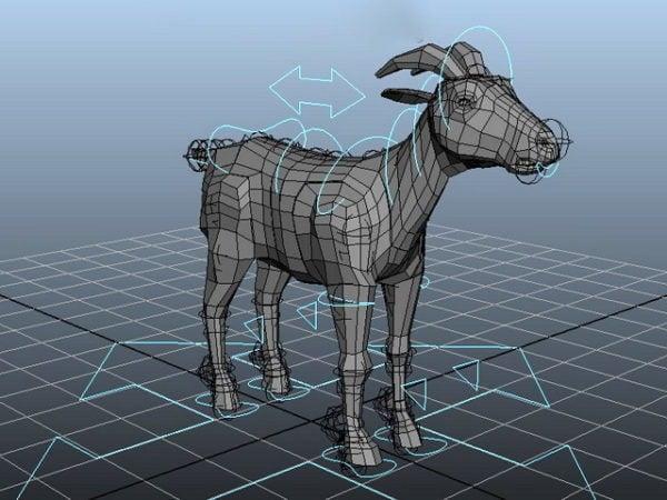 Wild Goat Rigged