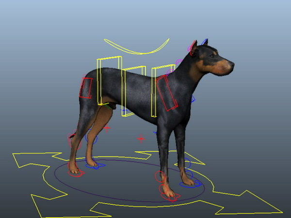 Doberman Dog Rigged