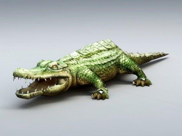 التمساح البري