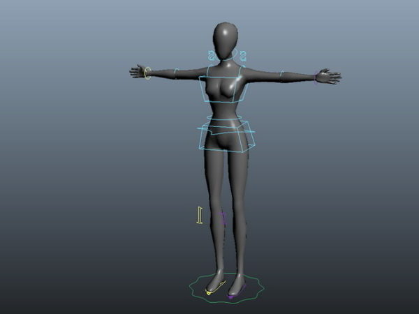 Female Body Rig