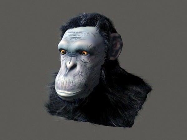 Realistinen simpanssin pää