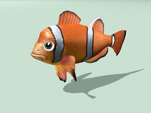 Clownfish Animoitu Rig