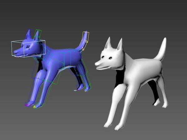 Koiran Rig