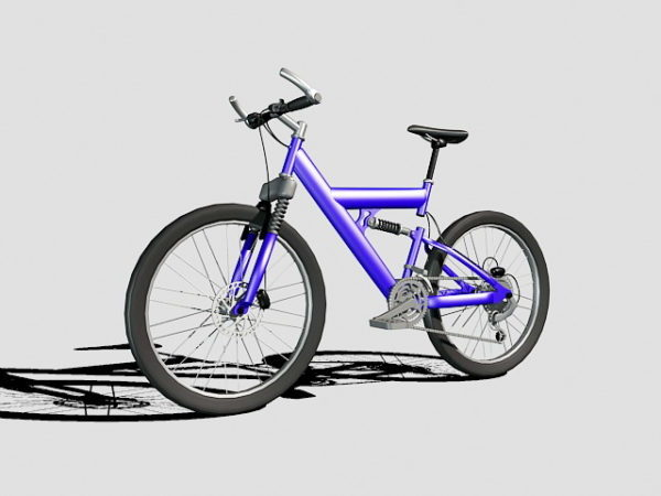 Purple Mountain Bike