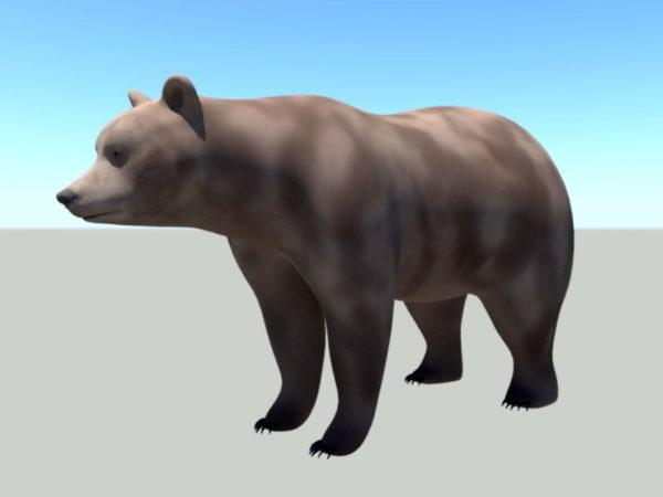 Brown Bear Rig