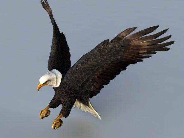 Plataforma de ataque del águila