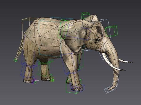 الفيل تشغيل الرسوم المتحركة والتلاعب