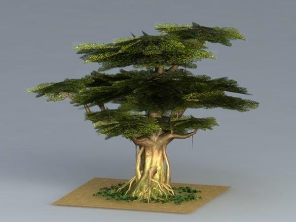 Towering Oak Tree