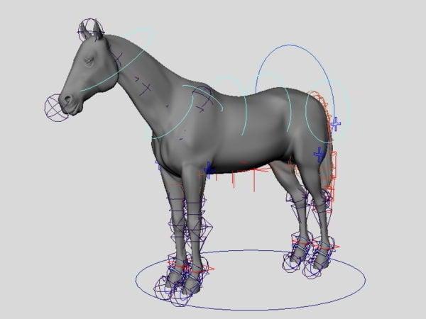Horse Rig