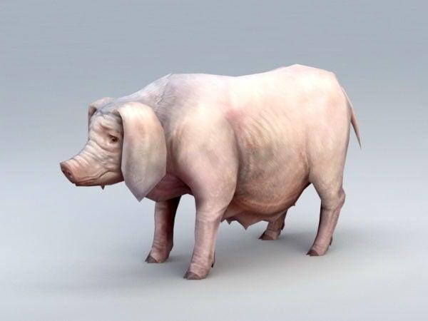 Cerdo Low Poly Poly