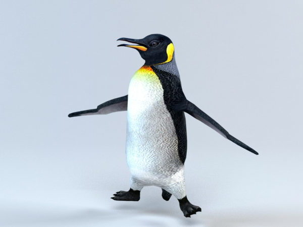 Animoitu pingviinilauta
