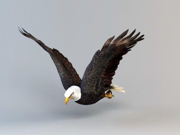 Animación de aleteo de águila calva