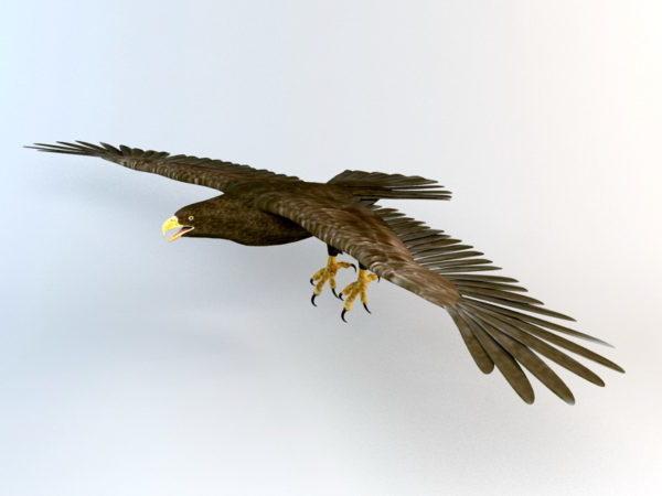 Águila Voladora Animada