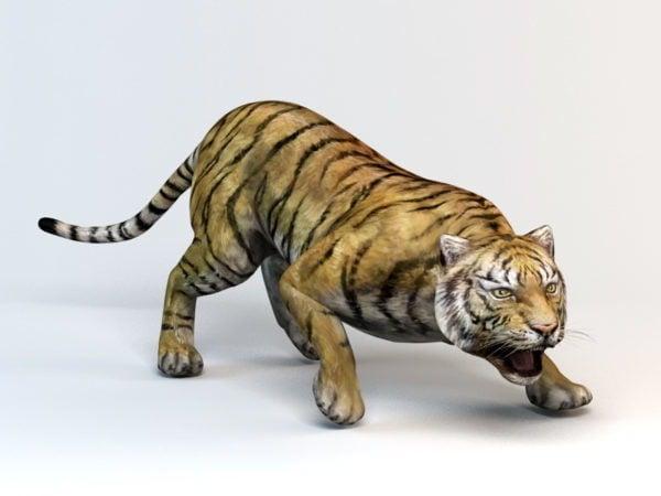 Sumatran-tiikeri