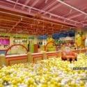 Children Ball House Interior Scene