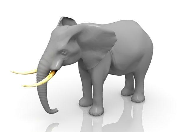 بوش حيوان الفيل الأفريقي