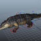 Amerikansk krokodilrigg