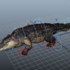 American Crocodile Rig