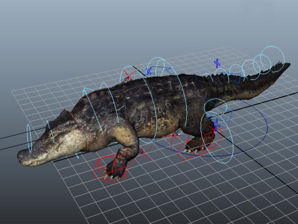 Amerikkalainen krokotiililaite