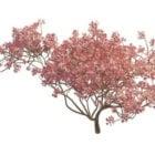 咲く桃の木