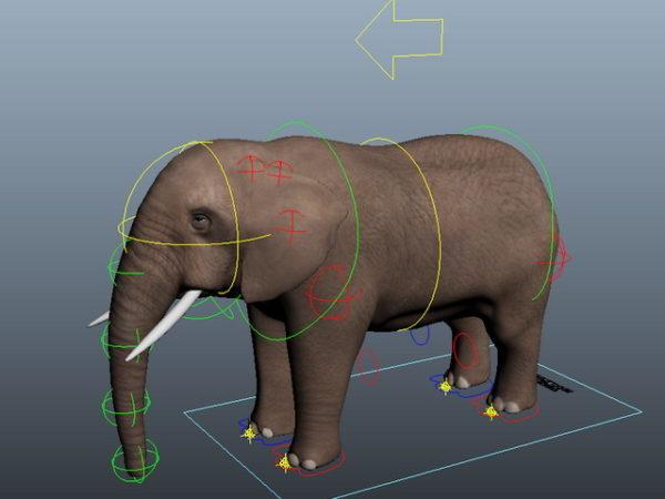 فيل تزوير