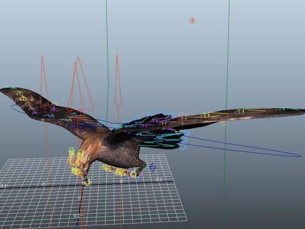 Flying Eagle Rig