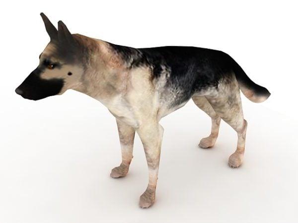 German Shepard Dog Animal