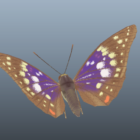 Great Purple Emperor Butterfly