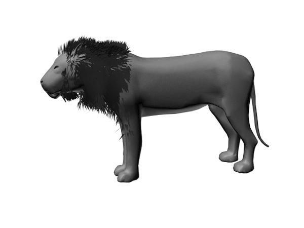 El león macho más grande