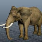 Indisk elefantdyr