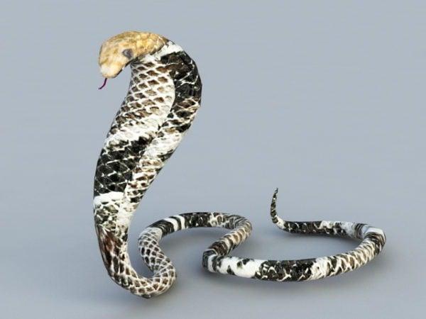 Kuningas Kobran käärme