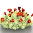 صبار المناظر الطبيعية مع زهرة حمراء