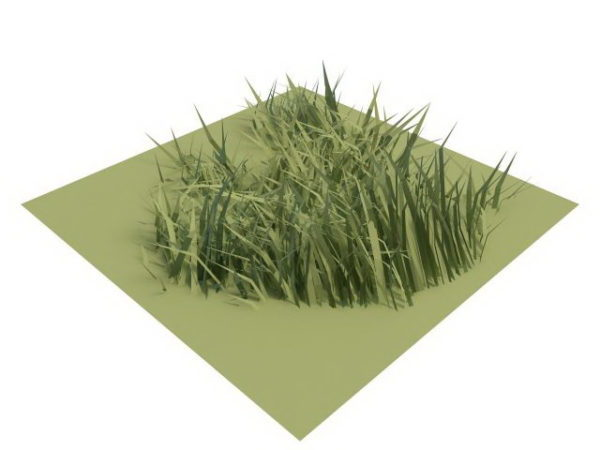 Low Poly Grass Free 3d Model Max Vray Open3dmodel 113372